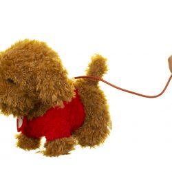 Waffle the Wonder Dog Walkies With Waffle Toy