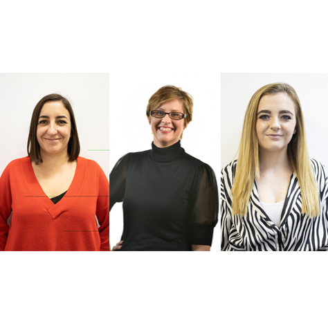 Golden Bear expands team with new hires