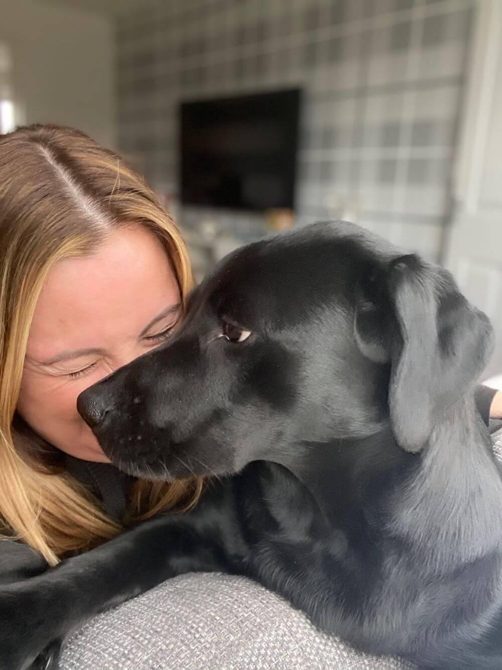 golden bear pet of the month meet bonnie